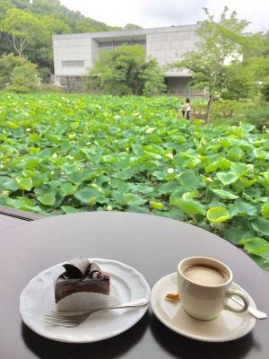 現在のカフェから鎌倉館