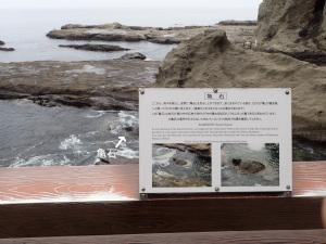 江ノ島稚児ケ淵の亀石