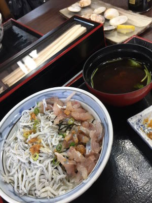 江ノ島でしらす丼